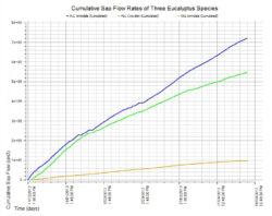 Cumulative Sap Flow